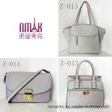Lederne Plüsch-Handtaschen der Guangzhou-Lieferanten-Form-Dame-PU (Z-015)
