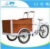 도시 화물 자전거 가족 사용