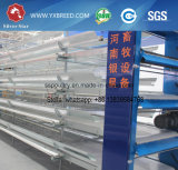 New Poultry Equipment Farming Chicken Battery Layer Cage
