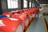 Il colore grigiastro Ral9002 ha ricoperto la bobina galvanizzata/lamiera di acciaio galvanizzata ricoperta prima