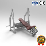 ISO9001 Certificado Fitness Machine Olympic Incline Bench para ginásio