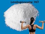 粉のLevobupivacaine HClの粉の中国のローカル麻酔の未加工供給CAS 27262-48-2