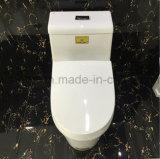 Ciotola di toletta di ceramica di un pezzo della stanza da bagno