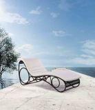 屋上のバルコニーの藤のある椅子かプールのラウンジのベッド1