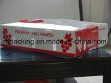 Caja plegable de plástico con serigrafía / Fruit Box Volumen de negocios en lugar de la caja protectora de cartón / uva Hecho con hoja de PP corrugado