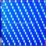 P10 옥외 파란 단 하나 색깔 LED 모듈