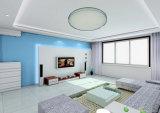 Preiswerteste doppelte Farben-runde Instrumententafel-Leuchte des Preis-85-265V