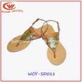 Ботинки сандалий женщин пальца ноги способа открытые