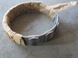 Hot-DIP гальванизированный ограждать провода бритвы/колючая проволока бритвы