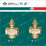 Durante 20 años de la experiencia de la fábrica de la fuente de nivel Df/F-05 de la alta calidad válvulas motorizadas