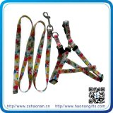 Sales caldo Promotion Nylon Dog Leash per Dogs