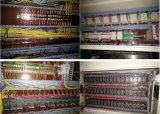 Vier Station-Vakuum und Thermoforming Maschine