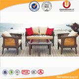 Sofà esterni del giardino della mobilia (UL-6010)