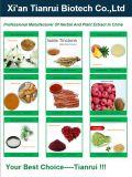 100%自然なHippophaeのRhamnoidesのエキスの粉
