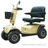 4つの車輪の二重シート電気旅行スクーター
