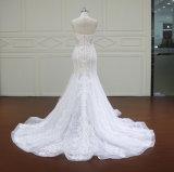 См. до конца конструирует Bridal тип Европ платья (XF16007)