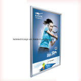 ライトボックスを広告するスポーツ・ウェアLED