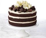 Não pó do creme de chicoteamento da leiteria/base da cobertura para arquivamentos do bolo