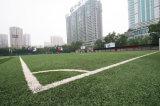 完全なフットボール競技場の人工的な芝生