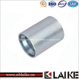 Puntali idraulici del tubo flessibile della piegatura (00400)