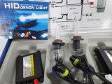 Gleichstrom 24V 55W H10 HID Lamp (Blau- und blakdraht)