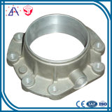 A liga de alumínio feita sob encomenda do OEM Desing da elevada precisão morre as peças do molde (SYD0108)