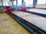 Spoor (Spoor) & Karretje die (Vervoer) Systeem (ptlts-24A1/A2/A3/A4) vervoeren - 2