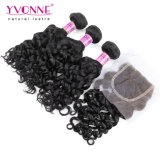 Lace Closure를 가진 브라질 Curly Virgin Hair