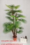 Самые лучшие продавая искусственние заводы и цветки пальмы Gu-Mx-Img_1356
