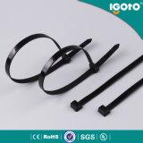 Qualitäts-preiswerter Preis-heißer verkaufender schwarzer Kabelbinder Nylon66