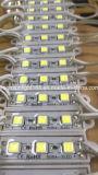 De LEIDENE van de Markt SMD 5050 van Turkije Verlichting van het Teken