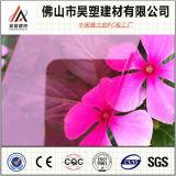 Foshan China 10 da folha contínua transparente do policarbonato da garantia 6mm anos de folha impermeável do PC