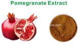 HPLC elágica do ácido 40%-95% do extrato da romã do cuidado de pele