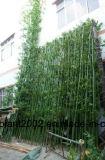 Alberi di bambù artificiali dei bonsai