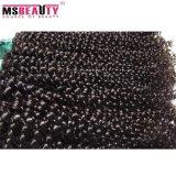 Moda 100% Extensão de cabelo virgem Remy Brazilian Kinky Curly Hair