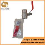 Valvola personalizzata acqua d'ottone Port piena di formato standard di 2 modi