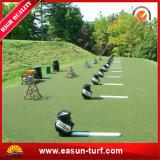 Synthetische Gras van het Gras van de laagste Prijs het Chinese Kunstmatige voor Binnenplaats