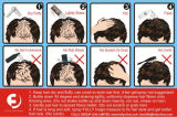 Fibre dei capelli di ispessimento dello spruzzo di difficoltà dei capelli del contrassegno privato dell'OEM