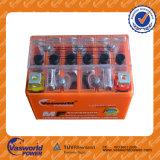Motorrad-Batterie-Großverkauf-Ladegerät-Motorrad für Kinder