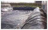 Acupuntura Geomembrane composto (PVC, PE) com de grande resistência