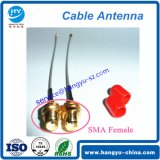 SMA-K à Ipex Lvds RF Cable Antenna