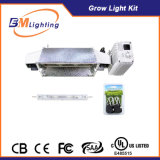 630W CMH Digital Lastre Hydroponic Grow Light Kit System