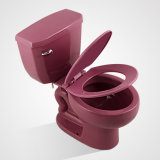 Chine Porcelaine S-Trap E-Pipe 2PC Water Closet, Pruplish Red