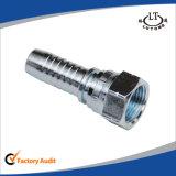 Hembra instalaciones de tuberías del hexágono 22691k Bsp del doble del cono de 60 grados
