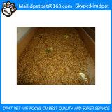 Larvas de farinha secadas venda por atacado para o alimento de animal de estimação