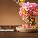 Flor preservada hecha a mano para el regalo de la decoración