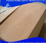 Madera contrachapada/madera contrachapada comercial/madera contrachapada común de Okoume F/B del pino de la madera contrachapada/del abedul