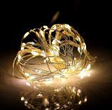 세륨 RoHS 승인되는 훈장 건전지 상자 LED 구리 철사 끈 빛