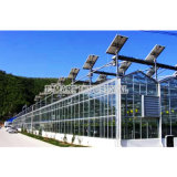 Kühlraum-Luft-Gebläse-Kühlsystem-Gewächshaus-Ventilator