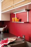 顧客の最初ホーム使用された合板の台所家具